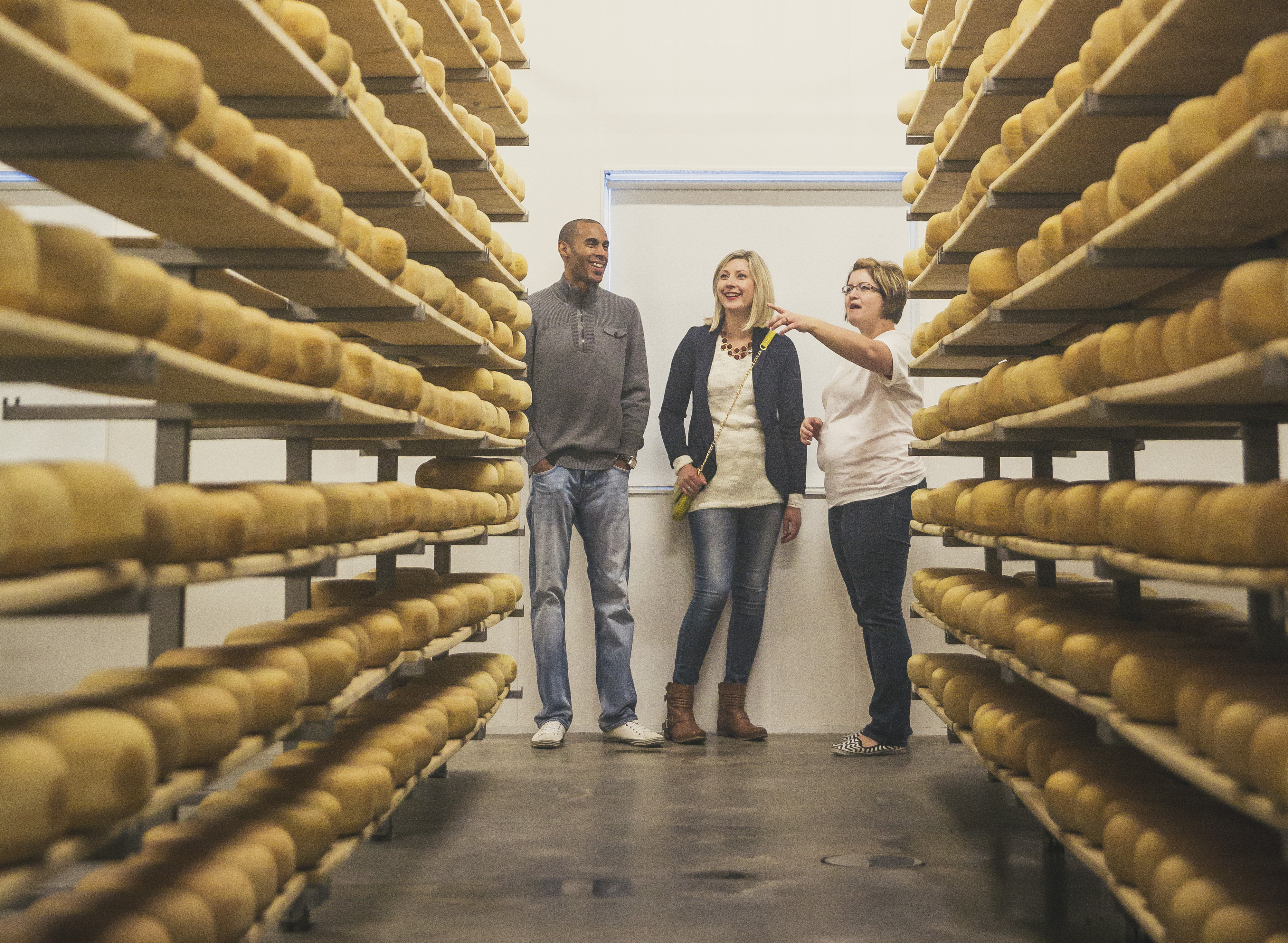 experience the oxford county cheese trail
